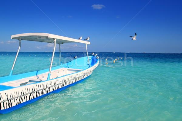 Azul barco gaivotas caribbean turquesa mar Foto stock © lunamarina