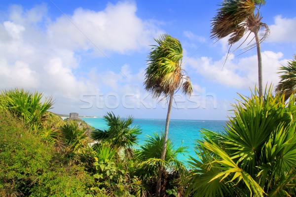 Caribbean beach Tulum Mexico turquoise aqua Stock photo © lunamarina