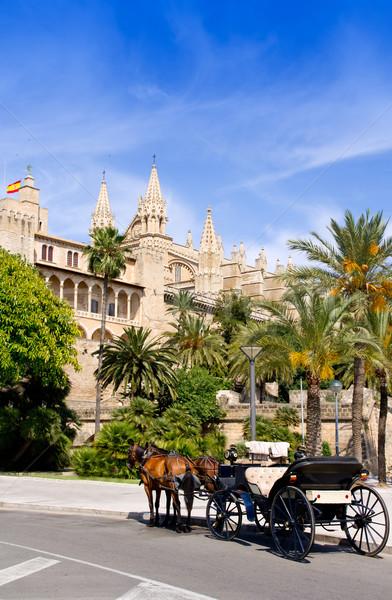 Fuvar lovak Mallorca katedrális pálmafák égbolt Stock fotó © lunamarina