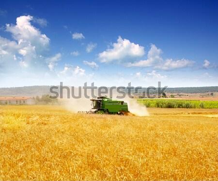 Hasat buğday tahıl çiftlik kamyon alan Stok fotoğraf © lunamarina