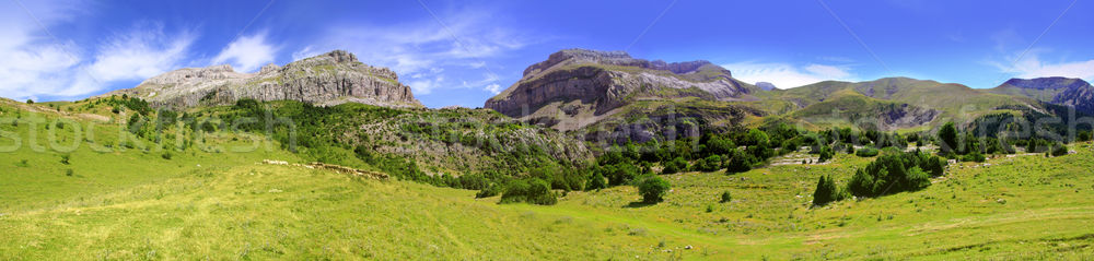 Bisaurin peak Pyrenees panoramic scenics Huesca Stock photo © lunamarina
