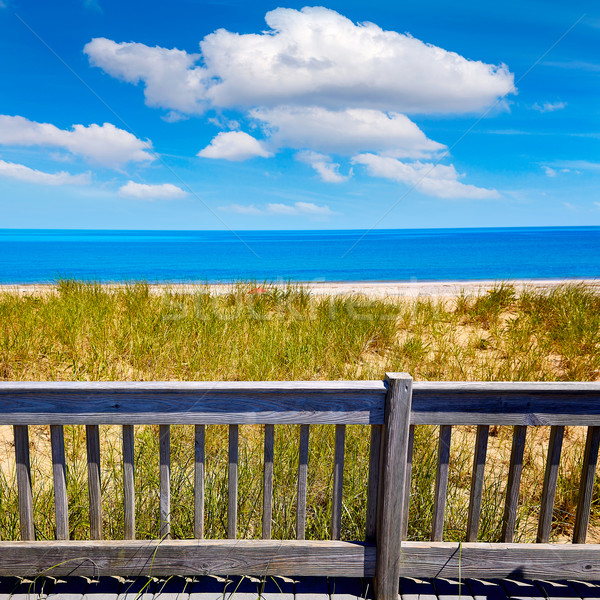 Cape Cod Sandy Neck Beach Massachusetts US Stock photo © lunamarina