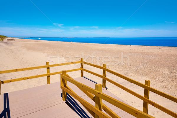 Cape cod zanderig nek strand Massachusetts USA Stockfoto © lunamarina