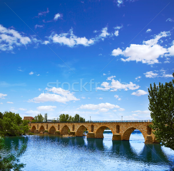 Zamora Puente de Piedra stone bridge on Duero Stock photo © lunamarina