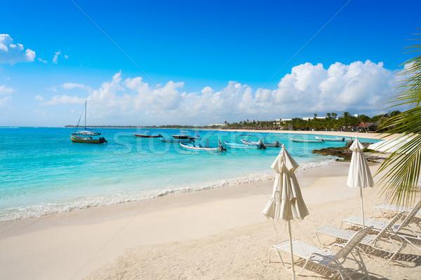Akumal bay beach in Riviera Maya Stock photo © lunamarina