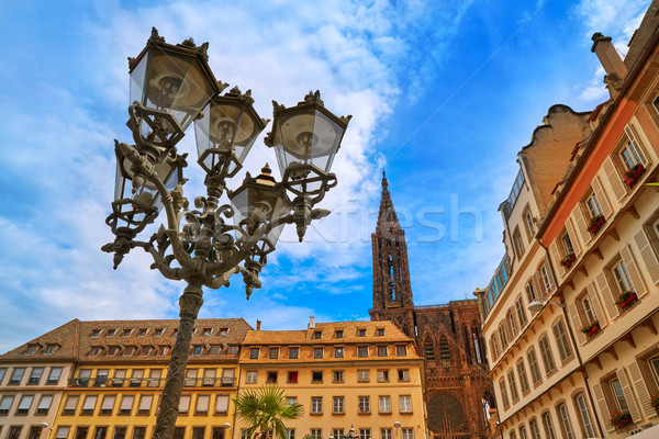 Strasbourg city and Notre Dame Cathedral France Stock photo © lunamarina