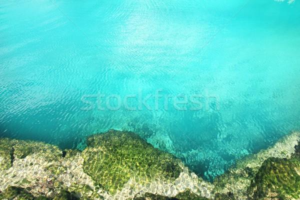 cenote mangrove turquoise water Mayan Riviera Stock photo © lunamarina