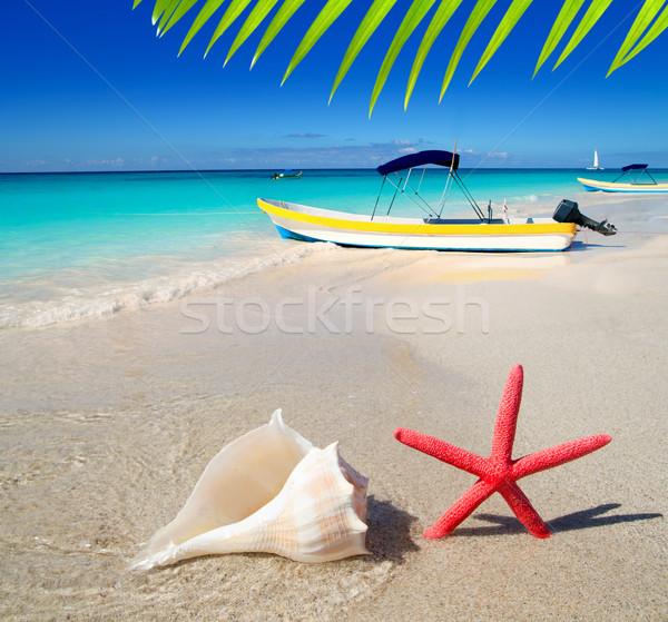 Zdjęcia stock: Plaży · Rozgwiazda · biały · piasek · tropikalnych · łodzi