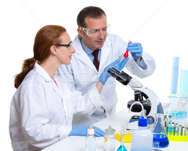 Kimyasal laboratuvar iki bilim adamı çalışma test Stok fotoğraf © lunamarina