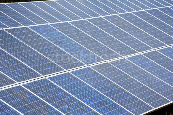 Solar plates for green sun energy Stock photo © lunamarina