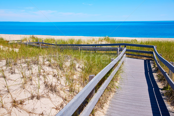 Cape Cod Sandy Neck Beach Massachusetts US Stock photo © lunamarina