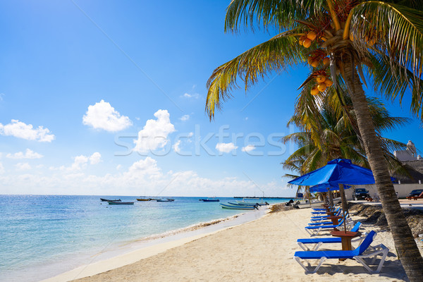 Puerto Morelos beach in Mayan Riviera Stock photo © lunamarina