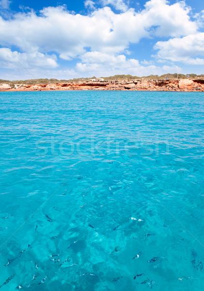 Cala Saona beach in formentera with fishes Stock photo © lunamarina
