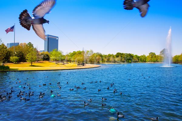 Houston lago primavera agua hierba verde Foto stock © lunamarina