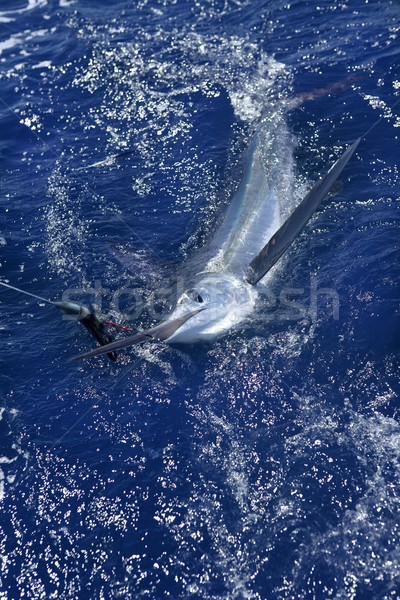 Stok fotoğraf: Güzel · beyaz · gerçek · spor · balık · tutma · fatura