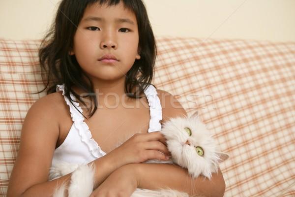 Foto stock: Asiático · menina · branco · gato · brasão · belo