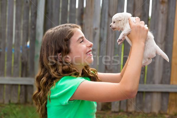 Foto stock: Criança · menina · cachorro · animal · de · estimação · jogar · feliz