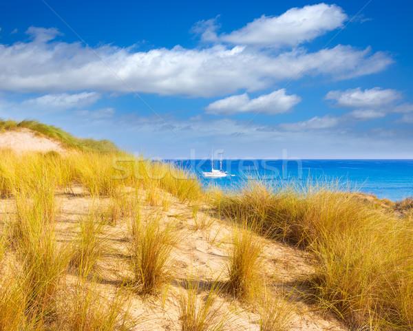 Majorca Cala Mesquida beach in Mallorca Balearic Stock photo © lunamarina
