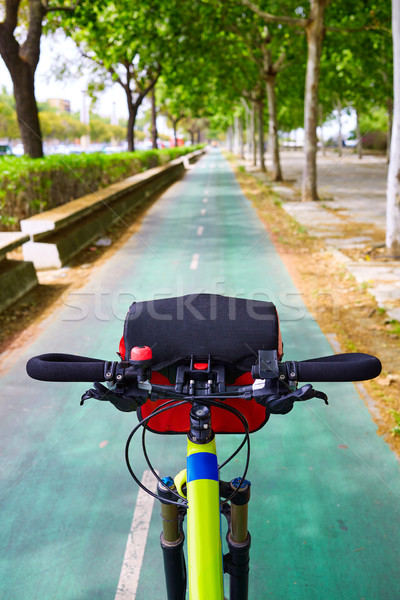Seville bike trail along the city in Andalusia Spain Stock photo © lunamarina