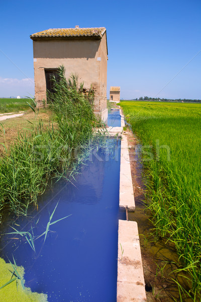 Rice fields in Valencia with irrigation and warehouse Stock photo © lunamarina