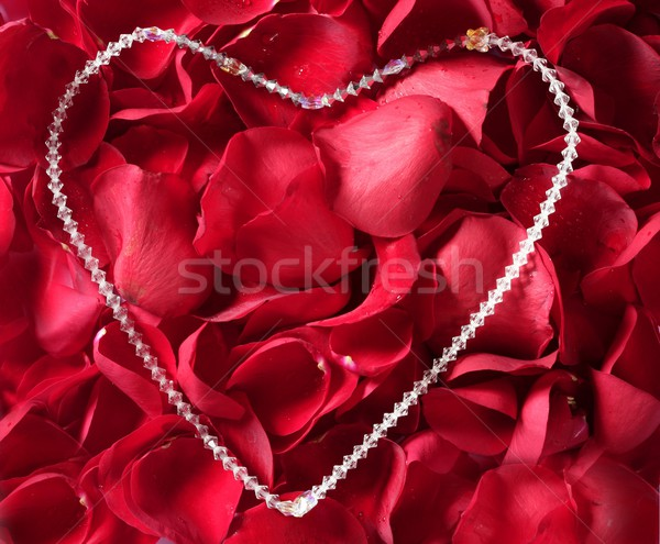 Sieraden ketting Rood rose bloemblaadjes juweel bed Stockfoto © lunamarina