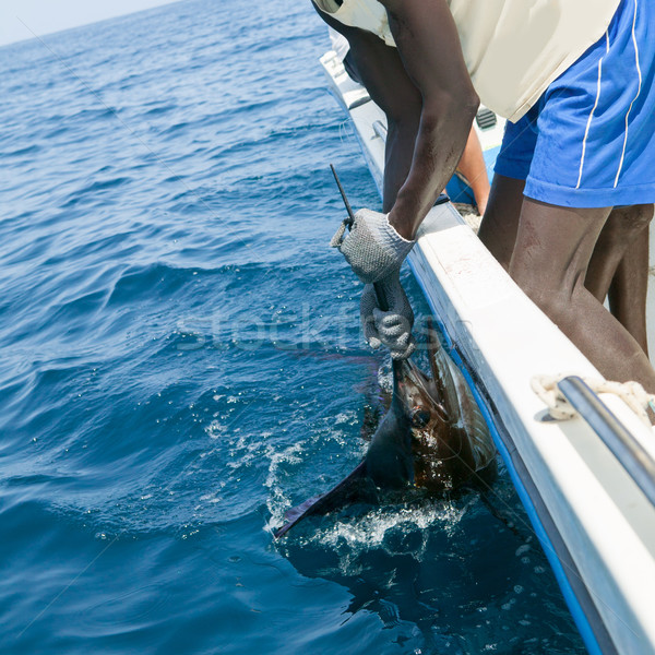 Sailfish catch billfish sportfishing holding bill Stock photo © lunamarina