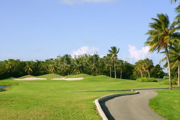 Miami Key Biscayne Golf tropical field Stock photo © lunamarina