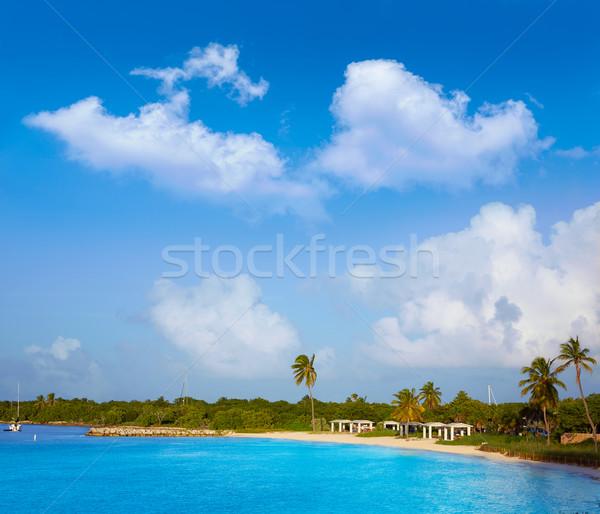Florida tasti spiaggia parco USA cielo Foto d'archivio © lunamarina