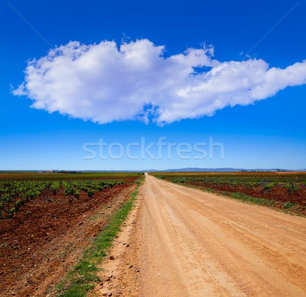 Via de la Plata way Guadiana vineyards Spain Stock photo © lunamarina