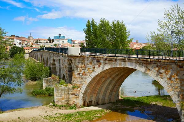 Zamora Puente de Piedra stone bridge on Duero Stock photo © lunamarina