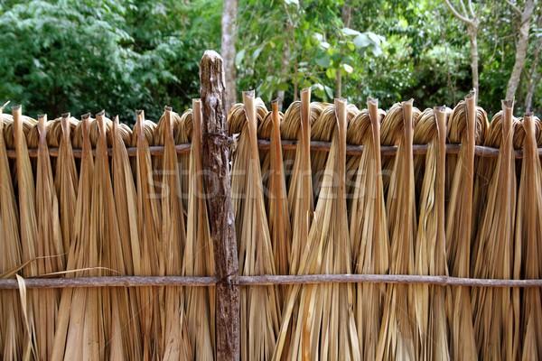 Palma foglie legno recinzione foresta pluviale giungla Foto d'archivio © lunamarina