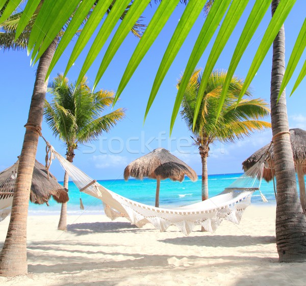 Caribbean beach hammock and palm trees Stock photo © lunamarina