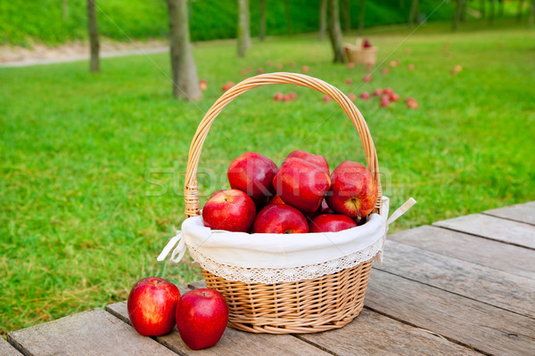 green and red apples in basket. add to lightbox download comp green and red apples in basket d