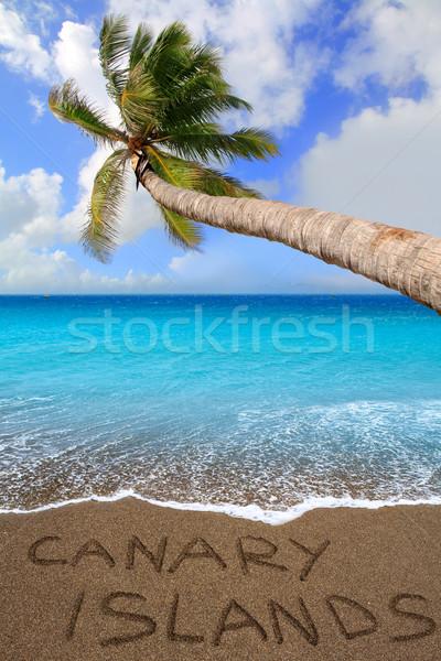 Brown beach sand written word Canary islands Stock photo © lunamarina