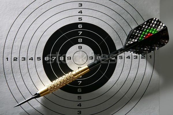Black and white target with dart and shadows Stock photo © lunamarina