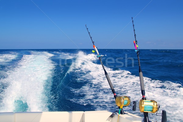 Trolling fishing boat rod and golden saltwater reels Stock photo © lunamarina