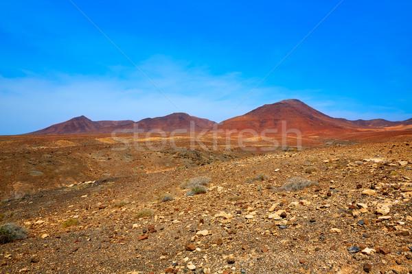 парка Канарские острова Испания пустыне горные острове Сток-фото © lunamarina