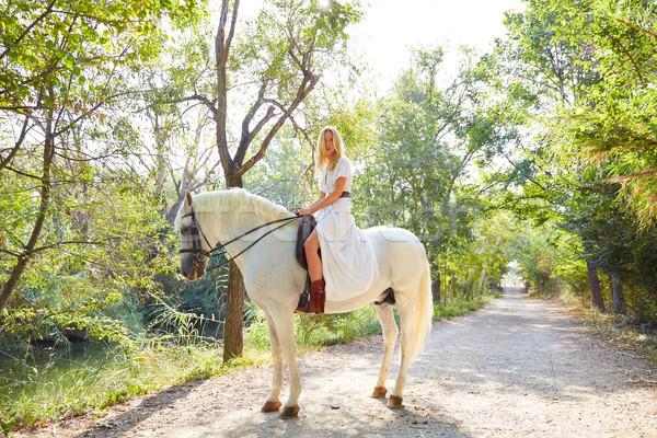 Szőke lány nő lovaglás fehér ló útvonal Stock fotó © lunamarina