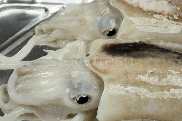 Cuttlefish uncooked, Squid Mediterranean seafood Stock photo © lunamarina