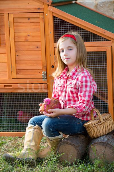 çocuk kız çiftçi civciv tavuk sarışın Stok fotoğraf © lunamarina