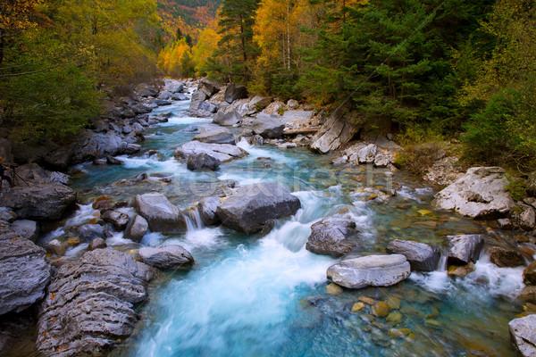 Rio Ara river Bujaruelo in Valle de Ordesa valley Pyrenees Huesc Stock photo © lunamarina