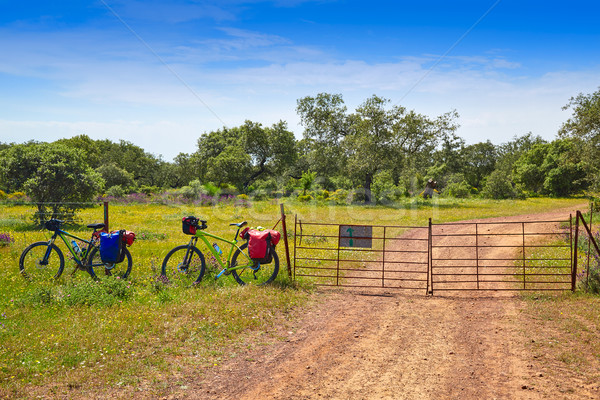 Via de la Plata way to Santiago by bike Spain Stock photo © lunamarina