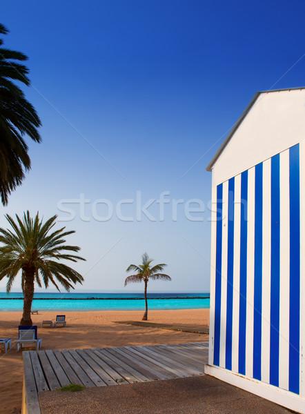 Plaj tenerife kuzey güneş Stok fotoğraf © lunamarina