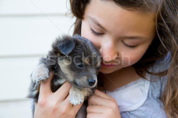 Mädchen hug wenig Welpen Hund grau Stock foto © lunamarina