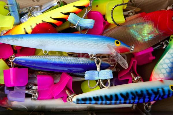 Színes halászat sósvízi hal doboz rozsdás Stock fotó © lunamarina