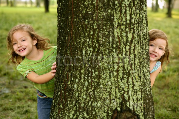Two twin little girls playing in tree trunk Stock photo © lunamarina