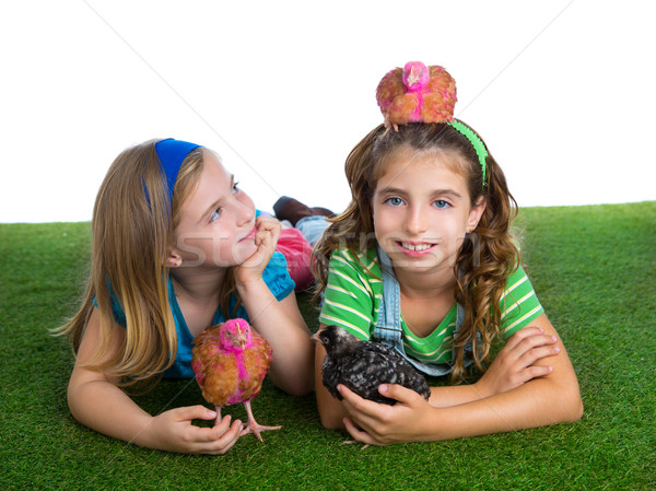 breeder hens kid sister farmer girls having fun with chicken chi Stock photo © lunamarina
