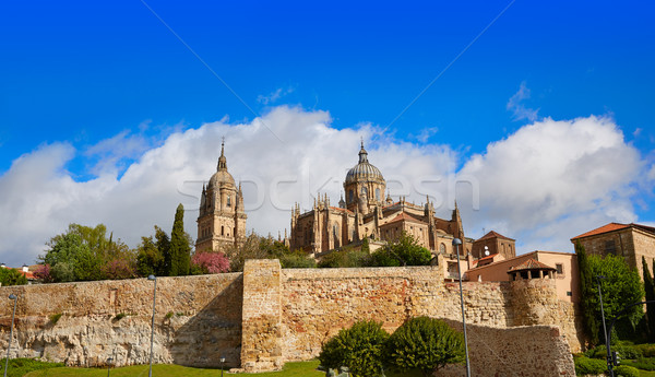 Salamanca Cathedral facade in Spain Stock photo © lunamarina