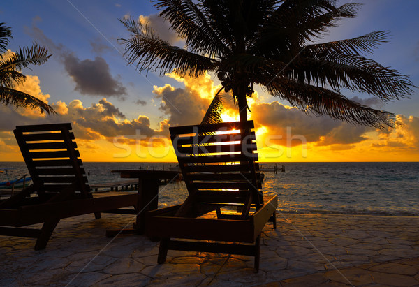 Riviera Maya sunrise beach hammocks Stock photo © lunamarina