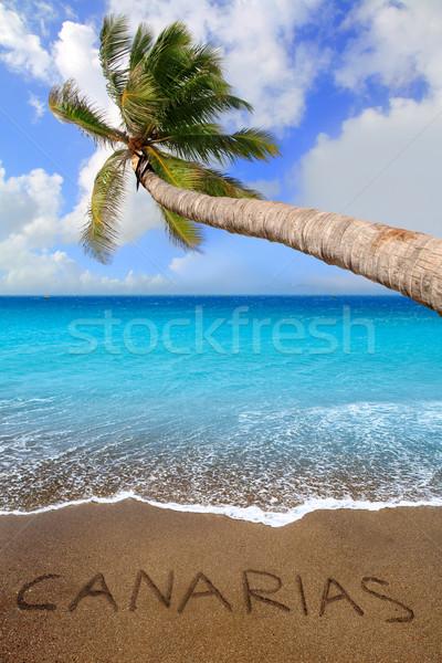 коричневый песчаный пляж написанный слово тропические пальма Сток-фото © lunamarina